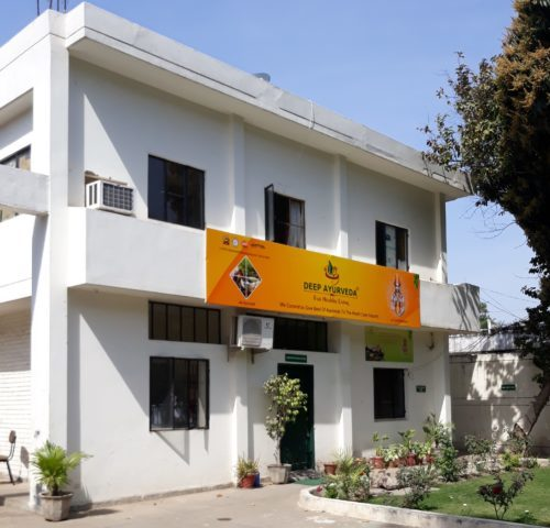 deep ayurveda factory