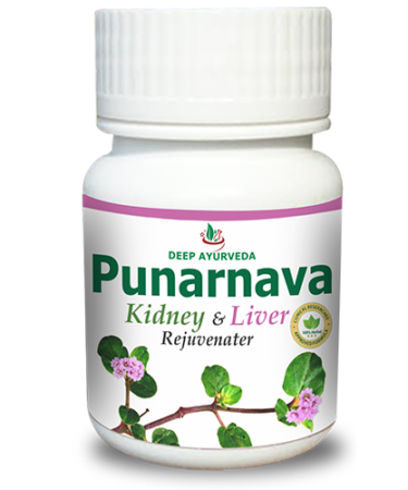 Punarnava Supplement