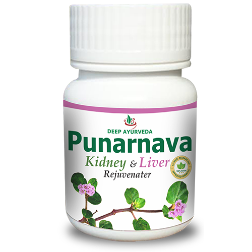 Punarnava Herbal Supplement